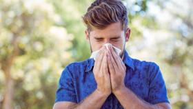 Junger Mann hält sich Taschentuch vor die Nase © WavebreakMediaMicro , stock.adobe.com